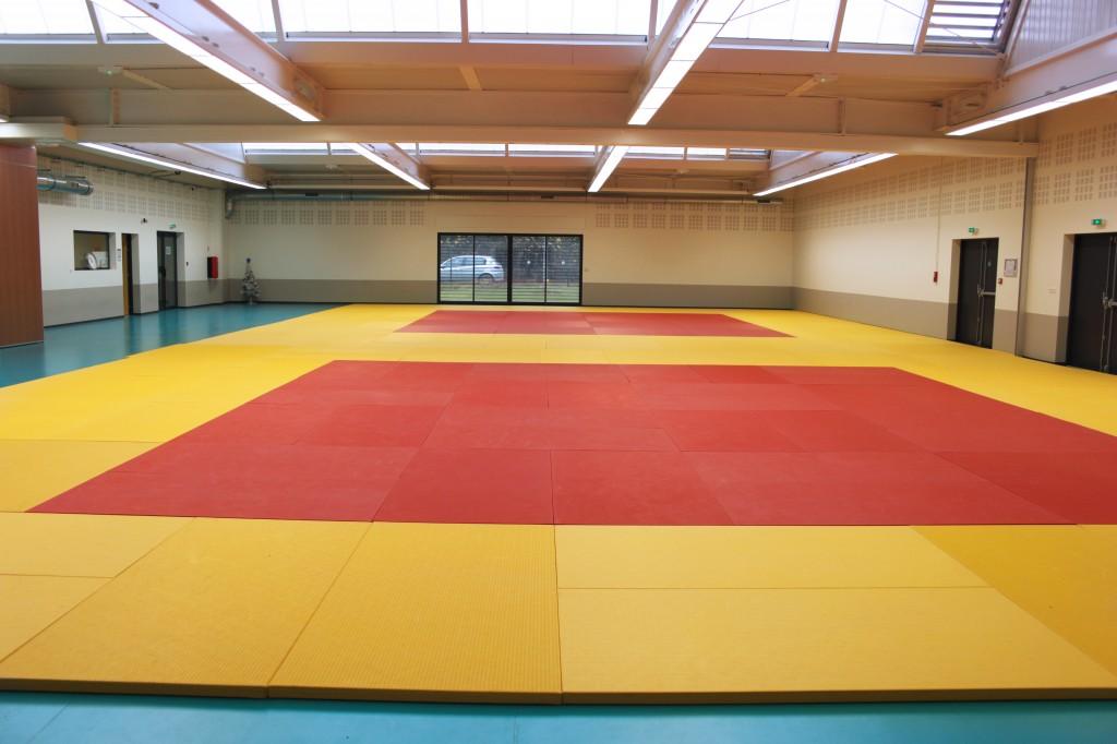 Cherche fille judo